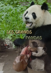 Les Grands Pandas - Jim Jimmy